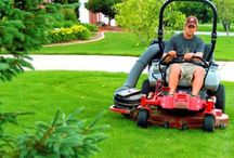 Gardening / Make your Garden beautiful by following our lawn care board.