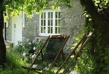 záhrada, garden