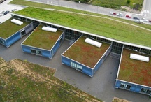 Green Roof / by Eric Birkhauser