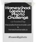 Homeschool Weekly Challenges