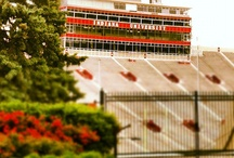 IU Football / by Visit Bloomington