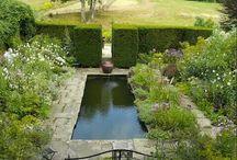 Trädgård - vatten damm