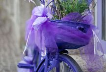 Flower´s bycicle racing