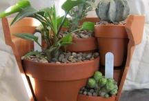 Planty gardeny type pins... / by Jacklyn Boyland