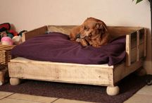 Raised Dog Beds For Large Dogs / Dogs like to sleep on beds. Large dogs have much different bed requirements then a smaller breed dog. Find a collection of raised dog beds for large dogs here