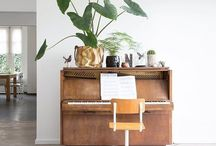 Green plants - indoor