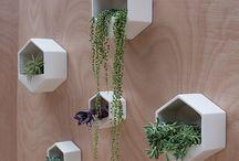 Green wall / Vertical gardens