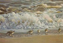 Peintre (Robert Bateman)
