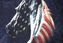 flag of America.