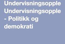 SAF Politikk og demokrati