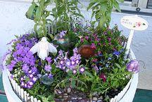 鉢の中のお庭