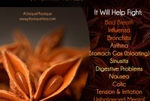 Tea Benefits / This board with describe every benefit existing in Physique's Teas and our ingredients