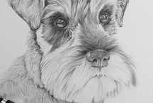 kresba pes
