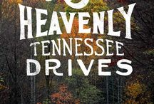 Road Trip / Explore activities in Tennessee for the whole family.