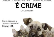 e crime!!!!!