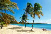 Vieques / VIEQUES ISLAND