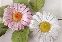 papir.kvet