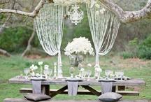 Doing It Myself - Wedding Ideas / by Irma Mesenberg