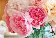 Favorite flowers / by Tarren Huff