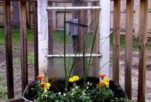 Outside / Gardening