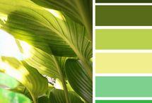 Farbe:  Grün / Farben, die zusammenpassen: Wohnungseinrichtung, Kleidung etc.