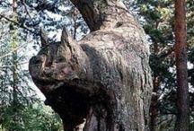 stromy - umělecká díla