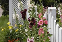 old fashioned gardens