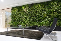 Greenology Vertical Greenery (GVG)