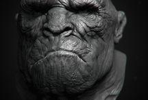 3d Character: Sculpt