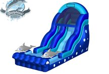 LARGE Water Slides for Rent! / Each of these slides is great for ALL ages! All are a crazy wild ride!