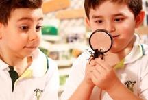 Doğa'da Bilim / Fen Eğitiminde temel olan kavramları erken yaşta öğrenen Doğa Okulları Çocuk Üniversitesi Anaokulları öğrencileri, ilerleyen yıllarda soyut bilimsel kavramları çok daha kolay kavrıyorlar.