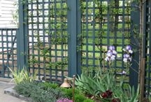 My Work - Susan Cohan Gardens / Landscapes, gardens, and details designed and built from my studio.  Please credit images appropriately. / by Susan Cohan