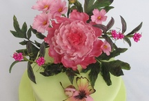 torte fiori