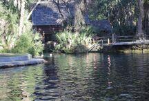 Juniper Springs- Ocala National Forest / Esta área recreacional é mais uma nessa Floresta Nacional em Orlando