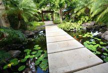 Zen Garden / by Sierra Hopson