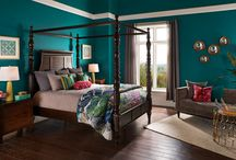 Rooms - Color Palate