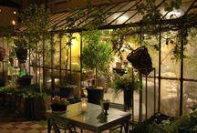 Serre Vintage / Le serre di Flò fiori nascono come rielaborazione personale di una nuova concezione di vivere il verde all'interno della propria abitazione.