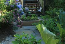 Victory Gardens Signature: Flagstone Garden / by Victory Gardens