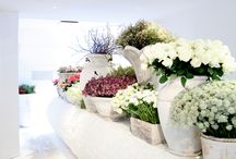 Amazing Flower Shops / Amazing flower shop interiors and exteriors from all over the world... Be inspired!