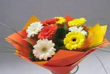 Online Florist Hyderabad / Online florist in Hyderabad is saves your time and money where it is a just like a medium to convey your cordial wish to your dear one. To make this easier on your part and instead of going to shops get these beautiful flowers in your sitting place.