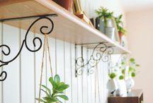 Gardening - Succulents, Air Plants and Terrarium