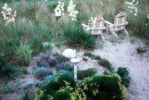 Gardening at the Beach