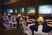 Houston Zoo's Kipp Aquarium Venue / Reserve your space today!