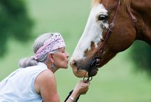 Horses in the News / A collection of direct links to news stories regarding horses and the equestrian lifestyle.