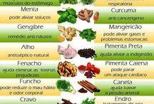 Culinária - Temperos e Especiarias