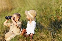 Safari Tours / It helps you make a better judgment before you book your next safari tour.