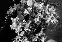 """""""il bianco e nero è più carico di sensi"""" / miei 'pensieri' in bianco&nero..."""