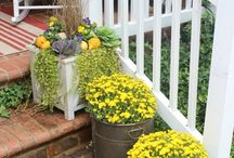 front porch ideas / by Michelle Kay Mulconery