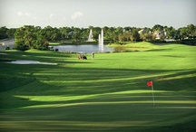 Treasure Coast Golf / 34 Golf Courses just in Martin County and so many more in the Palm Beaches. To find homes nearby: Call Team McAllister for Florida info! 561-756-0891 Janeb@kw.com   www.TreasureCoastHomesOnline.info  #golf #treasure coast #florida #homes for sale #real estate / by Florida Treasure Coast Real Estate