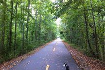 Atlanta Cycling Spots